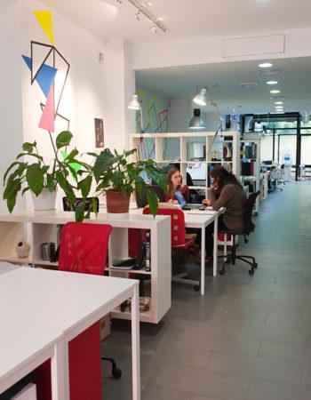 Coworking Botánico. Alquiler en la calle Turia, Valencia