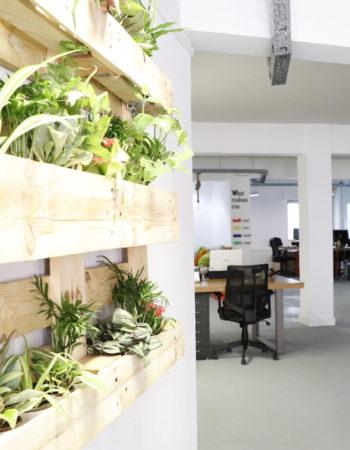 Alquiler en Gran Vía y Callao | Coworking Papaya Group.