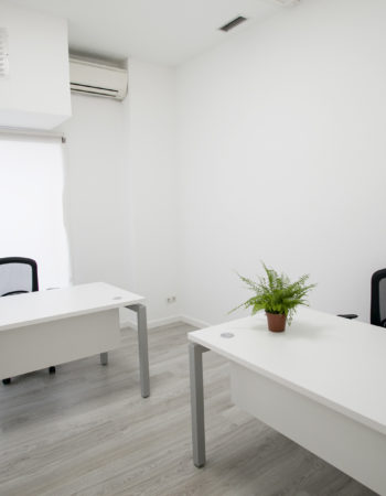 Professional Offices and Coworking