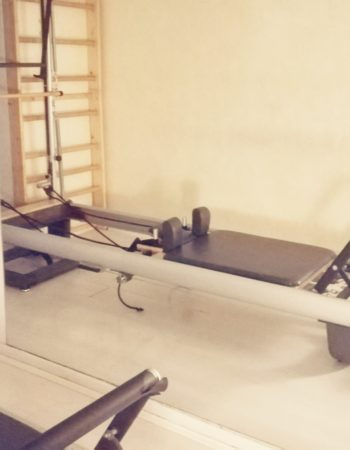 Rental of gym and cabin for therapies