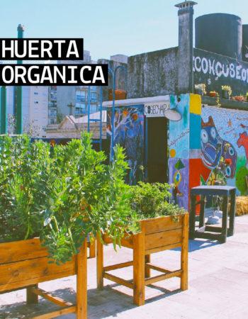 Huerta Coworking